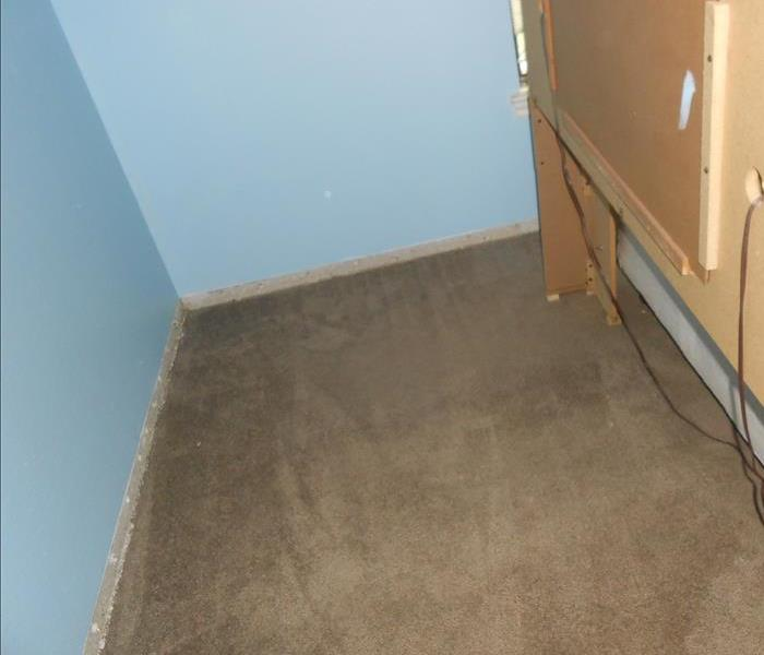 Dried brown carpet with blue wall