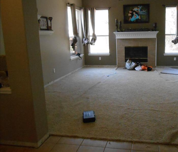 Emptied living room with dry beige carpet