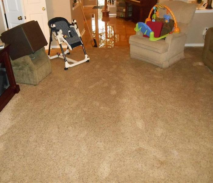 Living room with highchair rocker, and baby toy showing water on the brown carpet