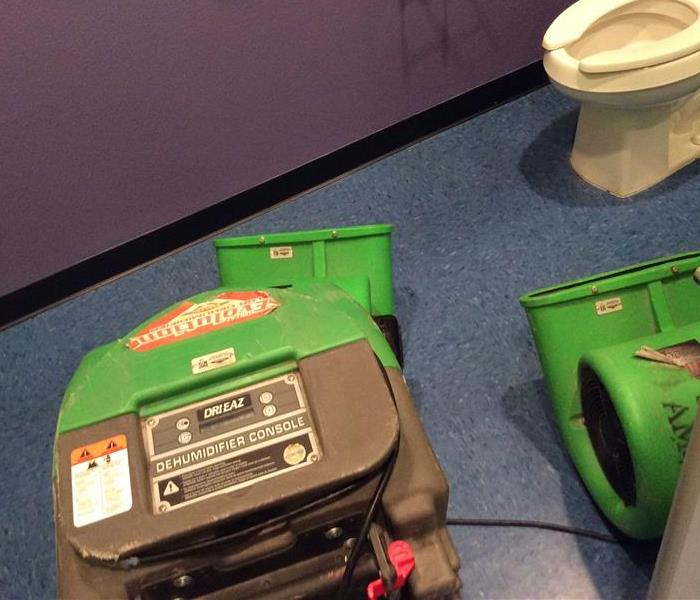 Two green air movers and a green dehumidifier in a bathroom, bathroom wall is purple