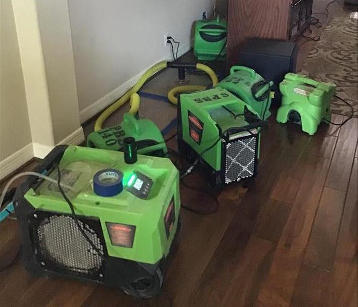 Six pieces of green drying equipment in a room with hardwood flooring