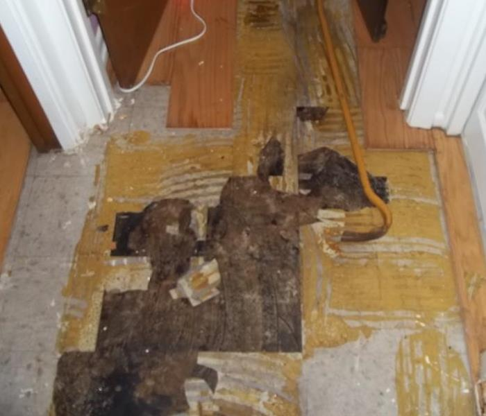 floor showing layers after a water damage including laminate and vinyl