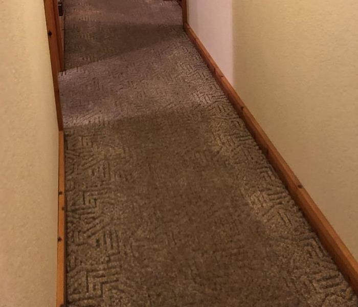 Wet carpet in a hallway