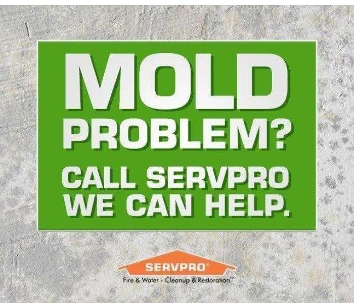Mold Problem?  Call SERVPRO we can help sign.