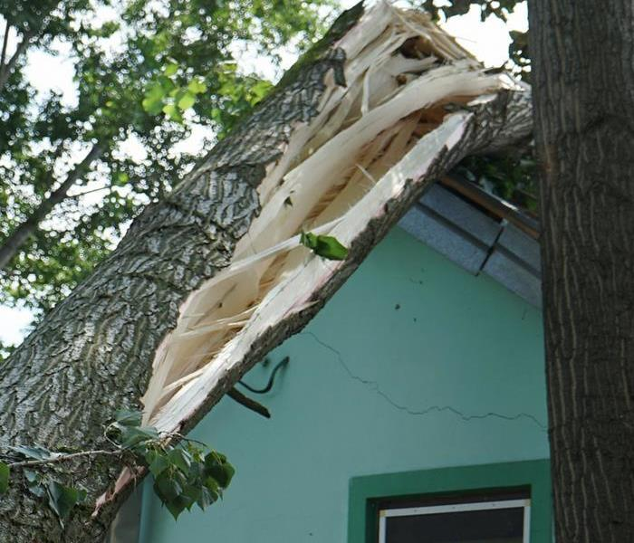 Tree laying on a home with a crack in the side of the home.