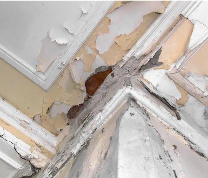 Commercial Warning! Water Damage at a Historical San Antonio Facility can Quickly Escalate
